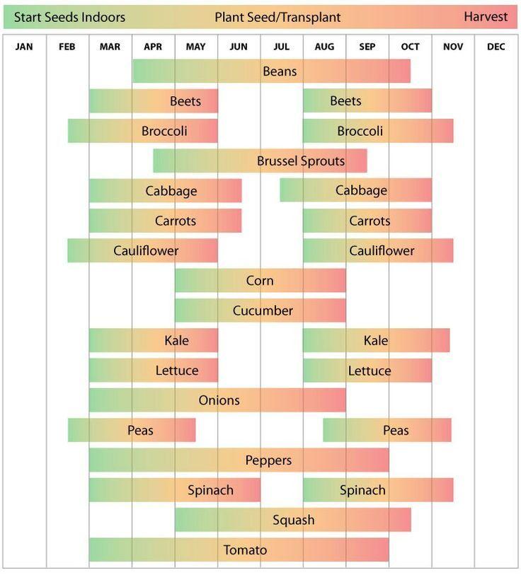 North Central Garden Planting Schedule