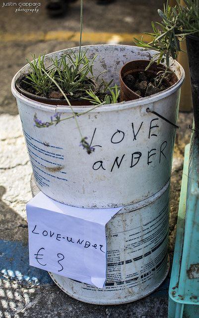 Love Ander, Love Under or Lavender? :) ..