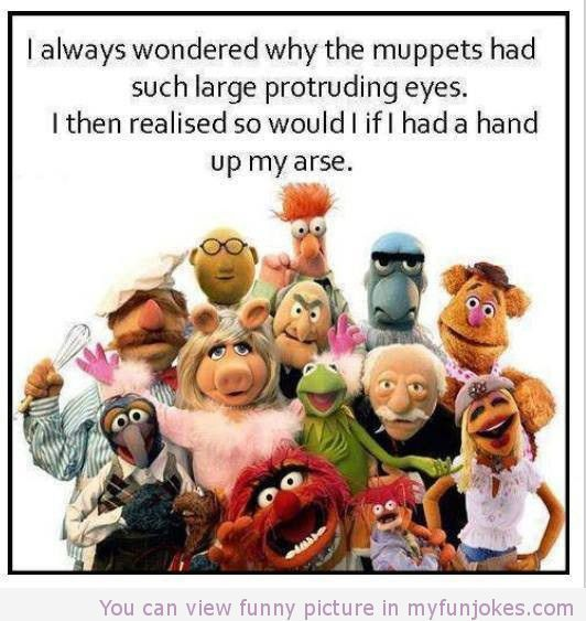 Funny adult muppets meme - Jokes, Memes & Pictures
