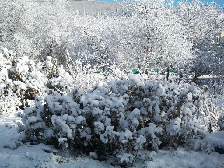 Утро п Солнечный  Хабаровский  край