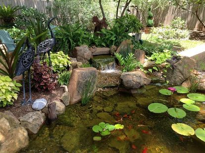 charming backyard water garden in richmond tx features a constructed wetlands filter, gardening, landscape, ponds water features, An additional waterfall was created on the back of the pond using an Aquascape Waterfall Spillway This waterfall helps keep the water aerated and circulated so that we don t have stagnant areas in the water garden