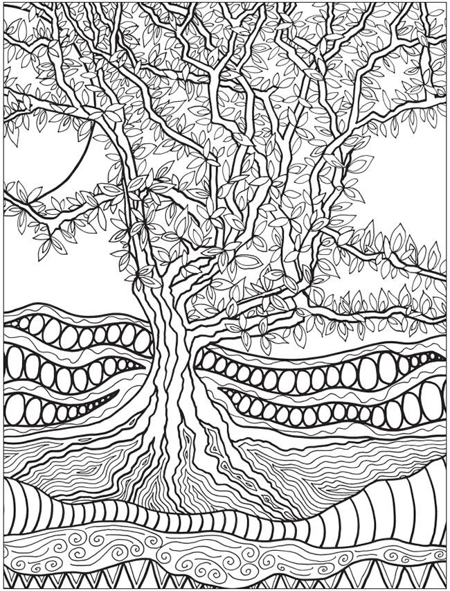 Creative Haven Into the Woods: A Coloring Book with a Hidden Picture Twist