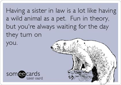 Having a sister in law is a lot like having a wild animal as a pet. Fun in theory, but you're always waiting for the day they turn on you.