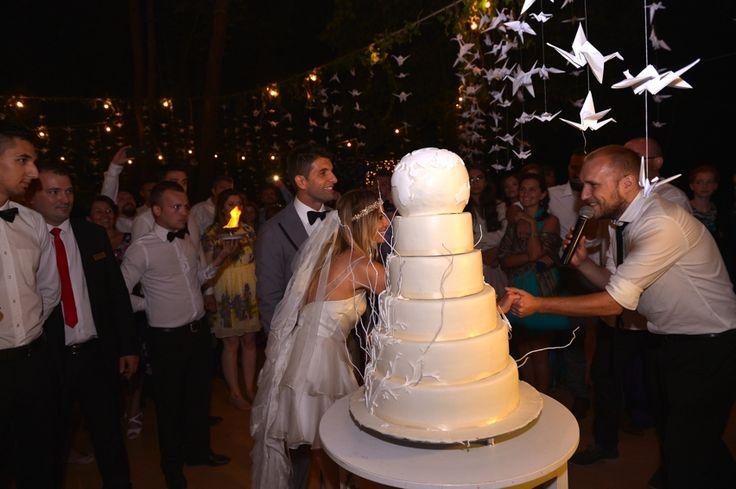 Nunta: Tg. Mures (Meniul, tortul si muzica) | Laura Cosoi