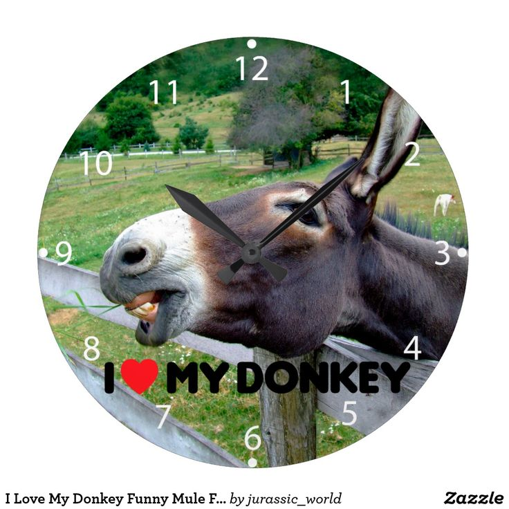 I Love My Donkey Funny Mule Farm Animal