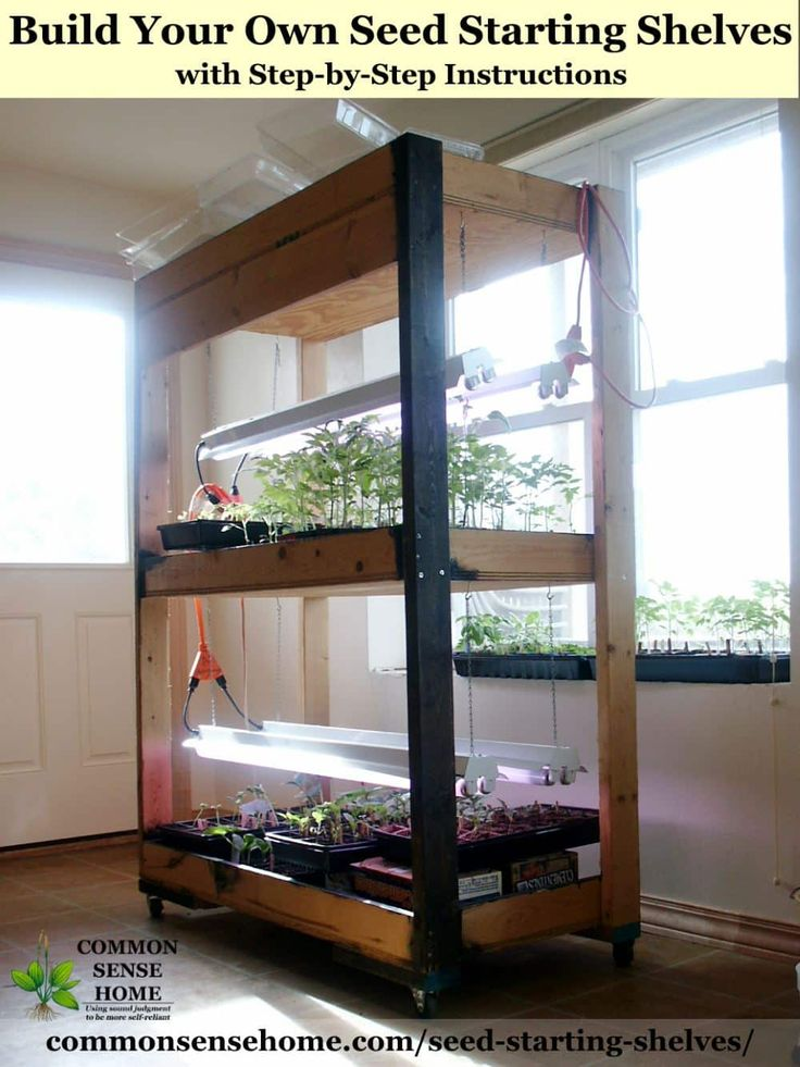 how to build a grow room in a shed