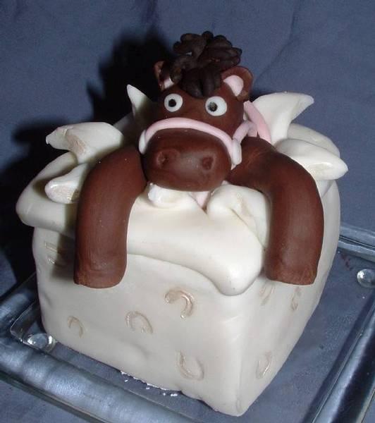 For Xavie's Party:  Fun Horse Cake - Mel Capyk, Wild Cakes, www.wildcakes.ca