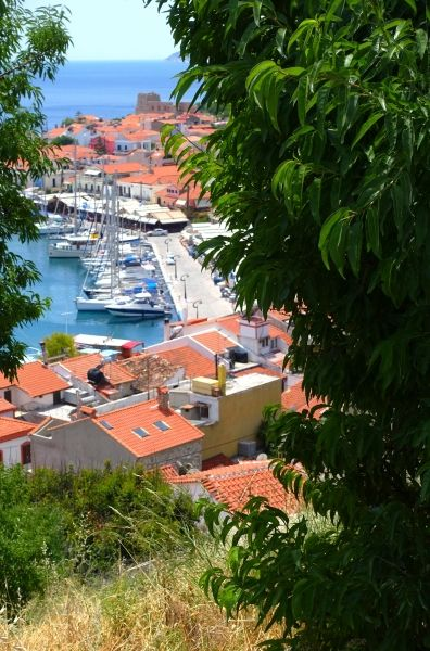 Photos of Pythagorion in Samos by Greeka members – Greeka.com - Page 1