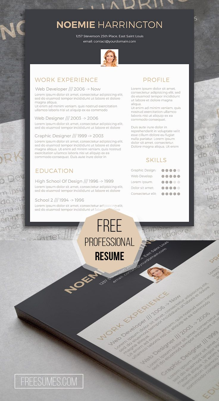 Free CV Template 35 best Free Resume