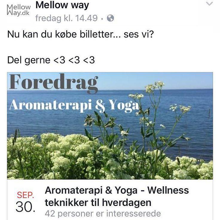 Vil du sikre dig en plads til efteråret skønne wellness arrangement så spring på nu...  4 timer - 2 foredrag - lækker frokost - fri kaffe/te hele dagen - Kun 400kr. -og jeg lover dig at du går derfra med nogle skønne værktøjet i kufferten  #webshop #mellowwayblog #foredrag #aromaterapi #æteriskeolier #yoga #meditation #ayurveda #sesvi #30september2017 #annegoncalvesyoga #primaveralife @anne.goncalves.yoga