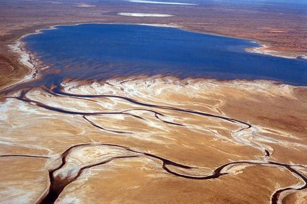 South Australian Film Corporation - Locations Gallery  Glorious Lake Eyre alive with all of the river systems running into it from New South Wales and Queensland