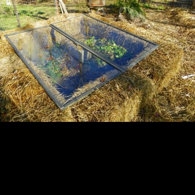 89 best grow some stuff images on pinterest gardening for Straw bale house cost per square foot