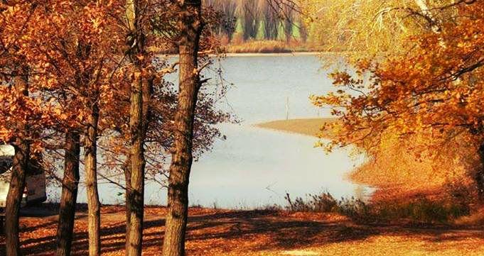 Autumn in Moldova :3