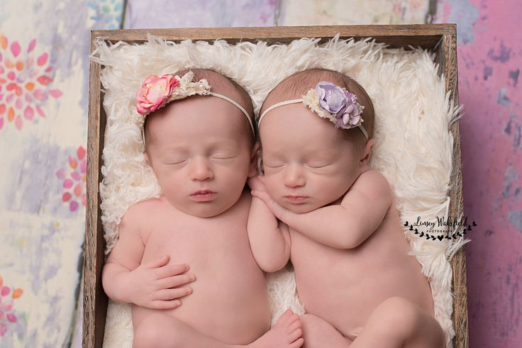 Newborn newborn photography newborn posing newborn twins linsey wakefield photography