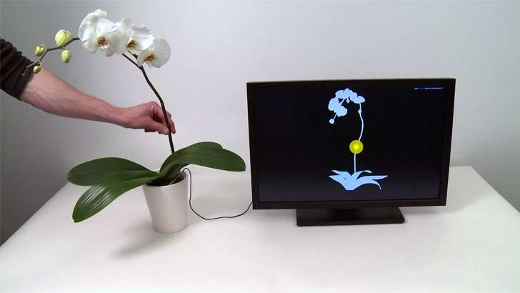 Disney develops plant-controlled touch software that makes music