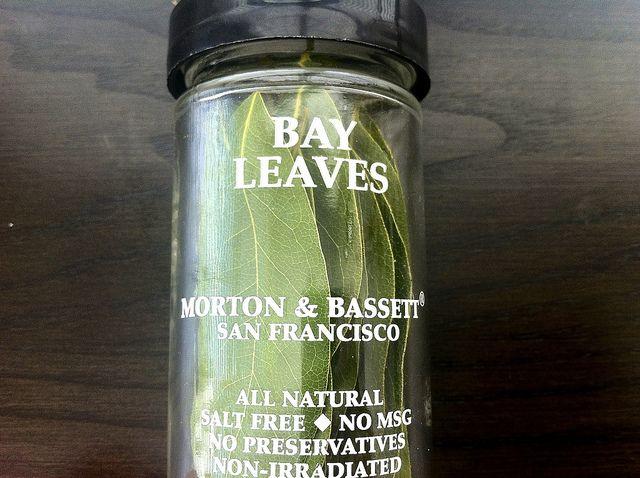 Morton and Bassett Bay Leaves by javelinwarrior, via Flickr