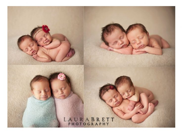 Image result for twins newborn photography family