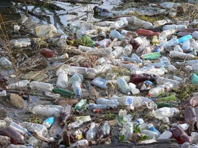 83 best Plastic pollution images on Pinterest