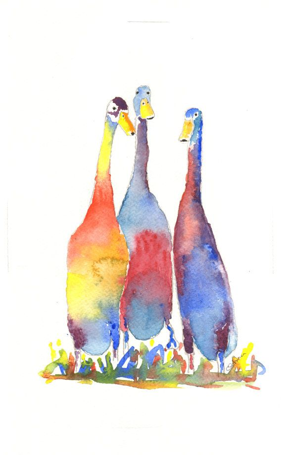Check out this item in my Etsy shop https://www.etsy.com/uk/listing/264218764/three-indian-runner-ducks-is-a-fine-art
