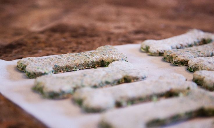 Recipe for homemade kale apple and mint dog treats! Amazing!
