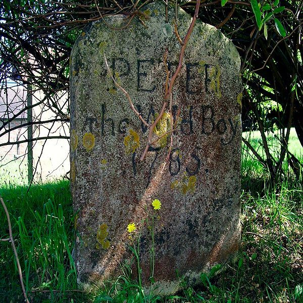 "Peter the Wild Boy 1785...  ""a feral 12 yr old  found in the German forest in 1725. Peter walked on all fours, ate grass & leaves and never learned to speak.He was bought to London and lived at the castle,virtually a ""pet"". He is buried in Hertfordshire,England."