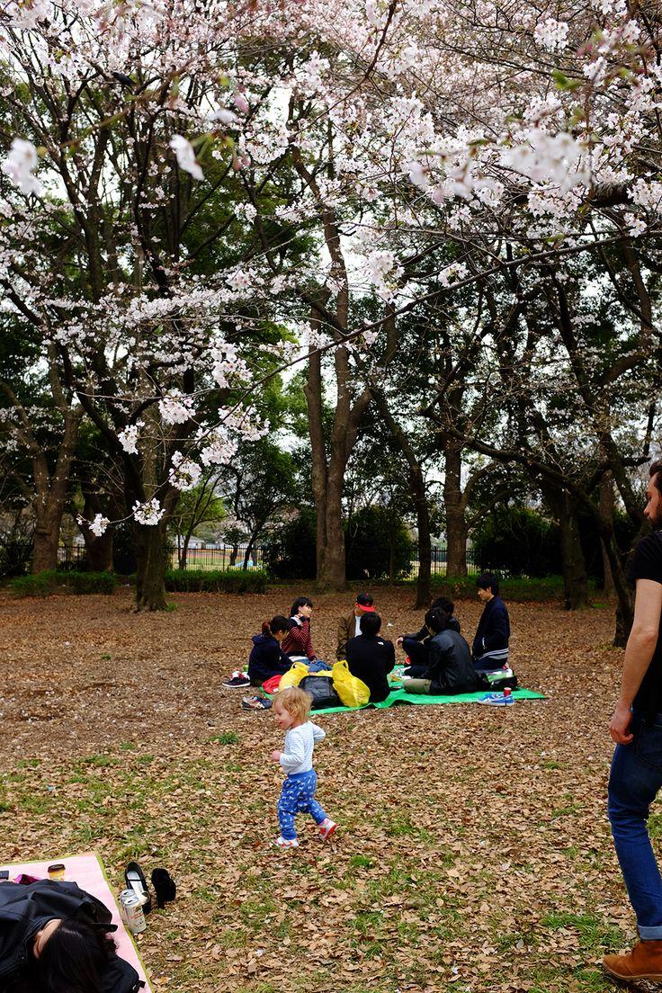 Japonia – część 1. Podróż z dzieckiem. – White Plate