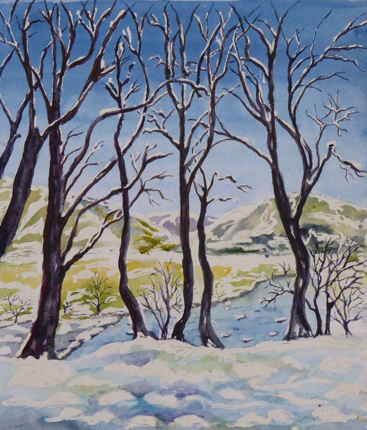 Dinas Bird Reserve in winter; watercolour by Gorica Bulcock