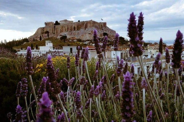 Joined Piraeus Shore Excursions for all Tastes and Budgets