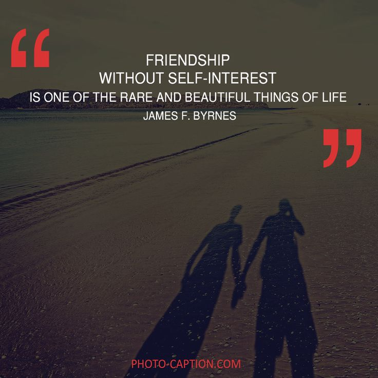 ''Friendship without self-interest is one of the rare and beautiful things of life.'' James F.Byrnes Check out the link in the bio for more best friend captions #friendship #bestfriend #love #BOYFRIEND #happy #friend #best #bestie #quotegram #quoteoftheday #photocaption #quote #quotes #quotegram #quoteoftheday #caption #captions #photocaption #FF #instafollow #l4l #tagforlikes #followback