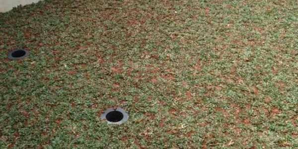 Biopori di rumah anda dapat di terapkan kembali dengan membuat lubang-lubang kecil guna untuk menyerap air hujan. - See more at: http://www.peluangproperti.com/lifestyle/renovasi-dan-furnish/2015-01/3375/cara-mengatasi-banjir-di-rumah-sendiri-dengan-biopori#sthash.0qWjNMEg.dpuf