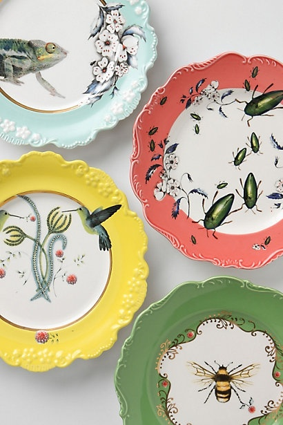 Natural world dessert plates --chamelions beetles hummingbirds and bees