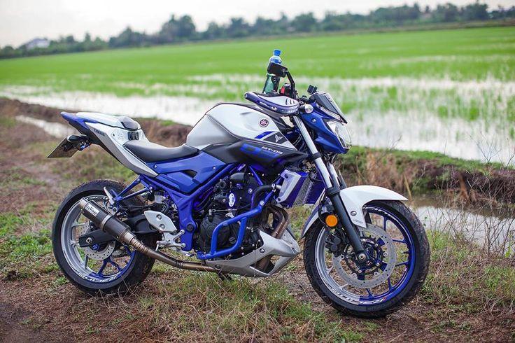 Crash bar set in blue for Yamaha MT03:http://anunaki-parts.com/en/yamaha-r3-mt-03/400-crashbar-mt03-yamaha-r3-mt-03.html