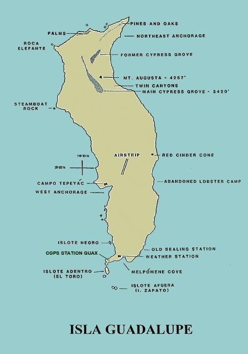 Guadalupe Island Map - Guadalupe Island - Wikipedia, the free encyclopedia