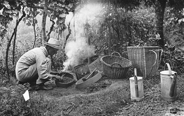 Hermann Hesse in his garden (date unknown) From predatorywaspobserver.