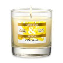Duftkerze Mimose & Akazie riecht einfach himmlisch