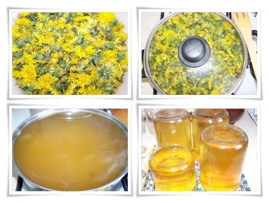 Pitypangméz receptje: Két nagy marék pitypangvirágot 1 l vízben felfőzünk. Amikor a víz bugyogni kezd, levesszük a tűzhelyről, és másnapig állni hagyjuk. Leszűrjük a főzetet, és jól kinyomkodjuk. Az 1 l léhez hozzáadunk 1 kg. cukrot, egy citromot, karikára vágva, és fedő nélkül, közepes lángon főzzük. A fehér cukrot, hogy kissé megreformáljuk, helyettesíteni lehet nádcukorral, és így még egészségesebb!