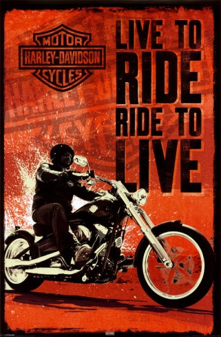 Harley Davidson - Live to Ride Posters from AllPosters.com
