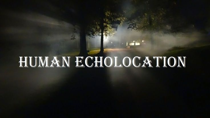 """Human Echolocation"""