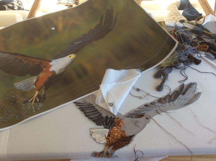 African Fish Eagle - work in progress.