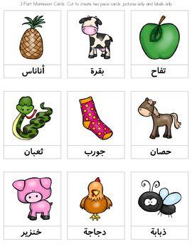 3-part Montessori Cards for the Arabic Alphabet