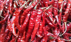 Buy DRIED RED CHILLI Food Ingredients on bdtdc.com