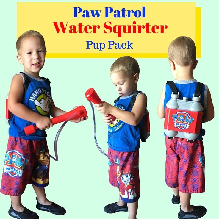 Marshall's Paw Patrol Pup Pack Toy - well...that's what Tyler calls it!  CLICK HERE!