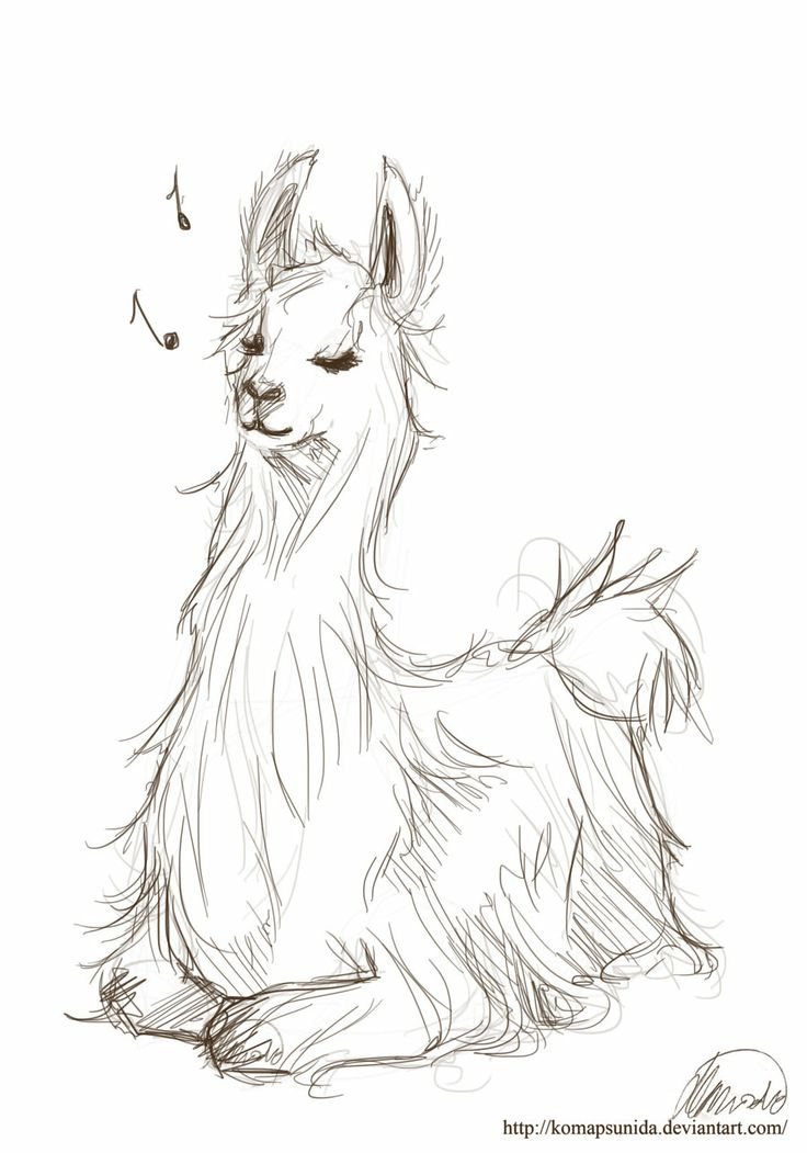 Llama Art | llama by komapsunida digital art drawings animals 2012 2013 ...