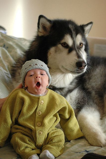 So adorable #kidswithdogs #kidswithpets