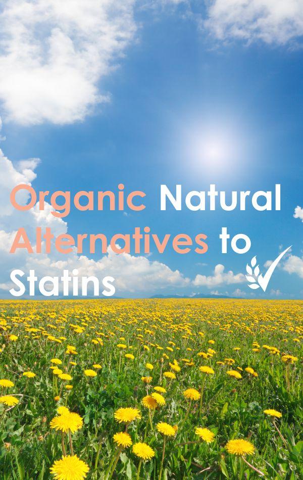 5 Natural Alternatives to Statins