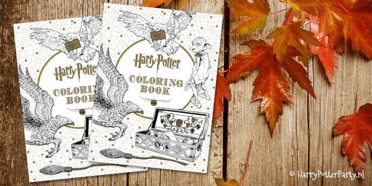 Eindelijk! Na jaren is het zo ver, het eerste, officiële Harry Potter kleurboek is uit. Nu het gemaakt is vraag ik me af waarom dit in hemelsnaam niet eerder is gemaakt, maar gelukkig hoeven we nu …