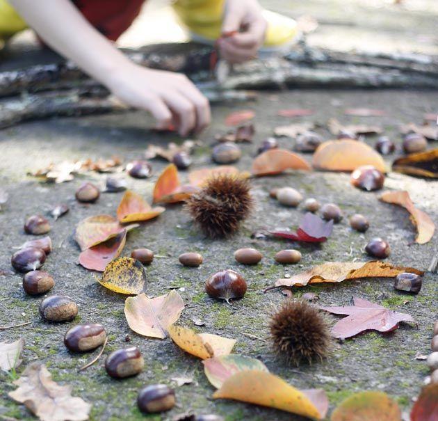 mandala para hacer con niños hecho con hojas y frutos del otoño. Manualidad ideal para hacer con niños en otoño