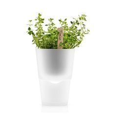 Eva Solo frosted glass self-watering herb pot - Yuppiechef registry