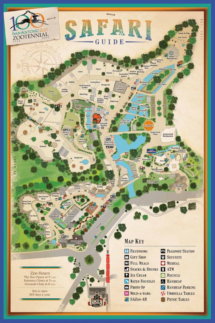 San Antonio Zoo - Zoo map