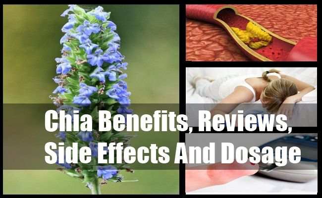 Chia Benefits, Reviews, Side Effects And Dosage | http://www.vitaminsestore.com/chia-benefits-reviews-side-effects-and-dosage/